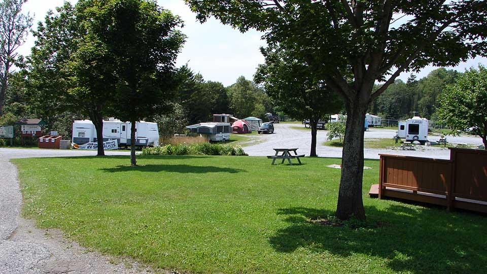 campground_012